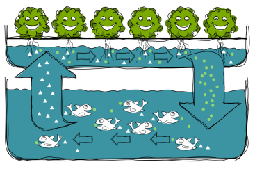 aquaponics_system