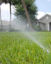 Irrigation-app-study-2-768x953
