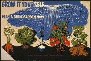 Grow-it-Yourself